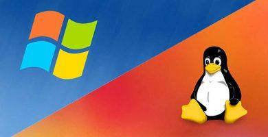 diferencia entre windows y linux