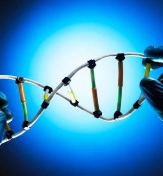 Diferencia entre gen dominante y gen recesivo