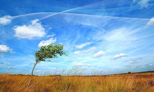 Diferencia entre aire y viento